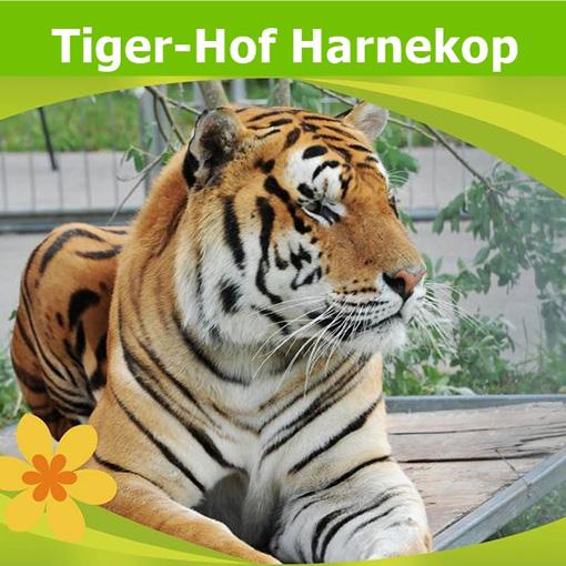 Tiger-Hof Harnekop